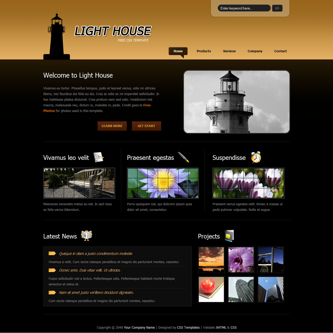 templatemo 265 light house