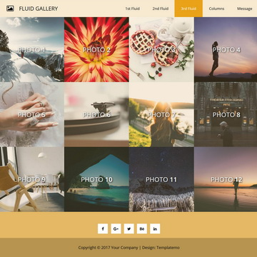 Fluid Gallery Template