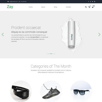 Zay Shop Template